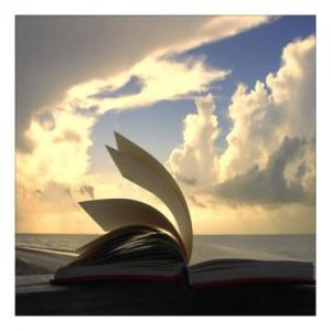 book-9066-300x300